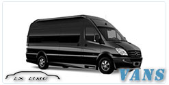 Houston Luxury Van service