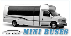 Mini Bus rental in Houston, TX
